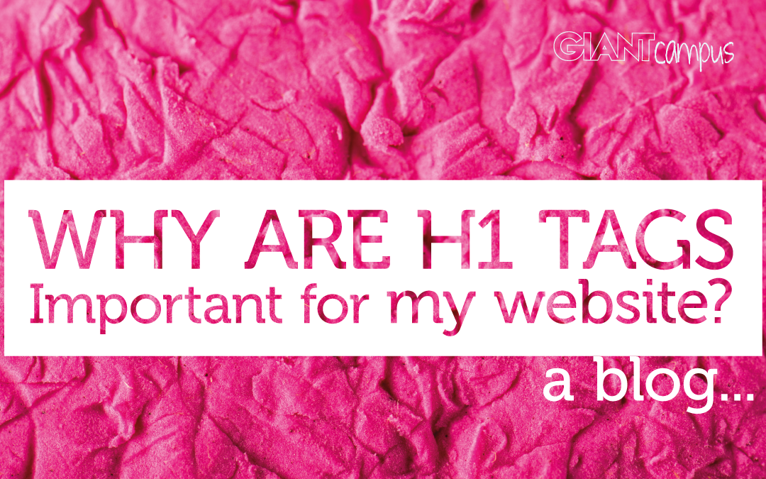 Why Are H1 Tags Important For My Website?